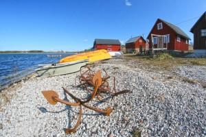 Field Day på Gotland